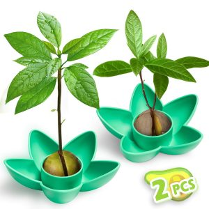 Seed Bowl Green 2 pack